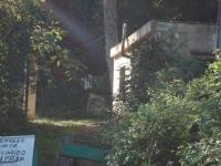 Al centre de la foto s'indica la font amb un cartell. (Cedida pel fons de l'Arxiu Històric Roquetes. Feta per Miquel Tormos)