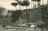 """Foto antiga del Llibre Guia """"Parc de Collserola"""""""