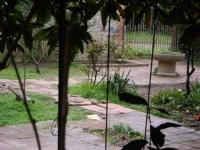 Vista de la font i el pati.