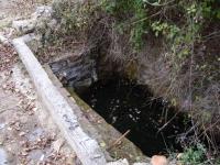 12.10.2008. Imatge de la bassa on hi ha l'aiguaneix.