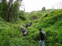 12.- Travessant la selva.JPG