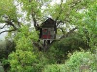 13.- La casa de l arbre.JPG
