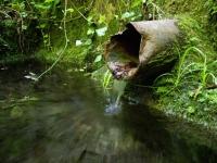 18.04.2009. Imatge del tub.