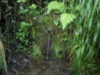 05.05.2007.- Imatge de la bassa i el tub.