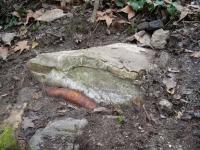 Imatge de la bassa de sedimentació.