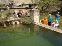 Imatge de la bassa de Can Parellada.
