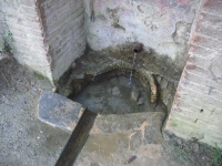 14.07.2007. Imatge de la bassa i el tub