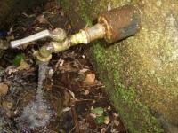 16.08.2007. Imatge del tub.