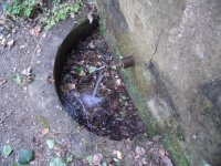 16.08.2007. Imatge de la pica i del tub.