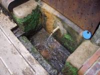 13.06.2011.- Imatge de la pica i del tub.