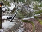 20.03.2018.- Font del Sert nevada.