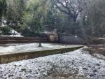 20.03.2018.- Font Joana nevada.