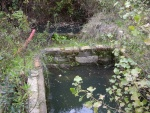 04.11.2012. Vista de les dues basses plenes d'aigua.