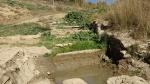 15.03.2019. Imatge general de la font amb la bassa com a punt d'aigua.