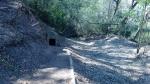 15.03.2019. Imatge del camí d'accés a la font.