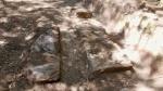 13.04.2019. Estructures de pedra que hi ha a terra.