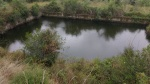 09.09.2019. Vista general de la bassa.