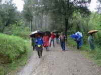 23_En mig de la pluja.JPG