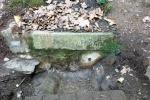 03.10.2020. Imatge de la bassa i els tubs. Cedida per Conrad M.