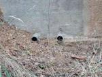 12.12.2009. Imatge dels tubs inferiors de sortida de l'aigua.