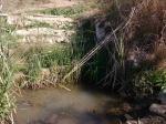 13.03.2021. Imatge general de la font amb la bassa com a punt d'aigua.