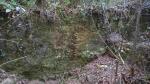19.07.2021. Mur o resclosa. A la dreta hi ha la mina.