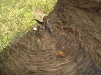 1 11.03.2007. Imatge del tub.