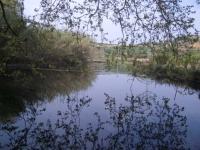 Una altra imatge de l'estany, ja ple.