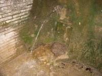 08.10.2005. Imatge de la caseta dins de la qual hi ha la font.