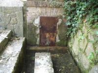 03.06.2007. Imatge de l'estanyol.