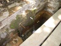 10.07.2010. Imatge del frontal i la bassa.