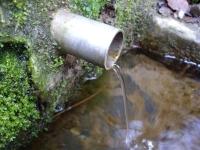 13.03.2010.- Imatge del tub.