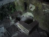 10.03.2007. Imatge de la bassa i el tub.