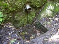 31.03.2007.- Imatge de la bassa i el tub.