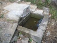 11.08.2007. Imatge de la bassa i el tub.