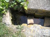 9.04.2006.- Imatge de la bassa on aflora l'aigua.