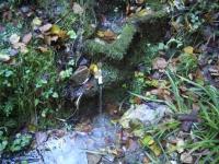 12.12.2010. Imatge de la font del torrent.
