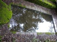 29.03.2009. Imatge de la bassa i el tub.