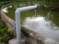 04.08.2010. Imatge del tub .
