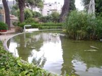 04.08.2010. Imatge de l'estany.