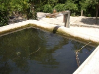 Imatge de la canal i de la bassa.