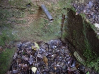 04.04.2009. Imatge de la bassa i el tub.