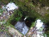 13.03.2010. Imatge de la bassa i el tub.