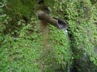 31.03.2007. Imatge del tub.