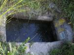 01.05.2006.- Imatge de la bassa.