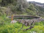 01.05.2006.- Imatge del dipòsit.