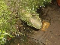 22.10.2005. Imatge del tub.
