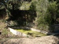 Imatge de la bassa safareig.