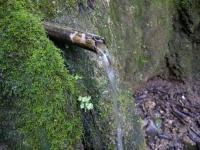 19.03.2011. Imatge del tub.