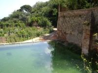 26.07.2009. Imatge de la gran bassa.